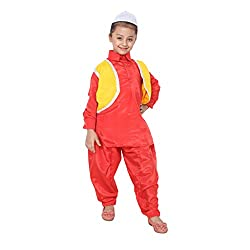 Shri Nikunj Raangoli Kashmiri Boy dress/costume for kids