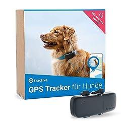 Tractive GPS Tracker für Hunde mit Aktivitätstracking - Leichter und wasserdichter Peilsender mit Echtzeit GPS-Ortung