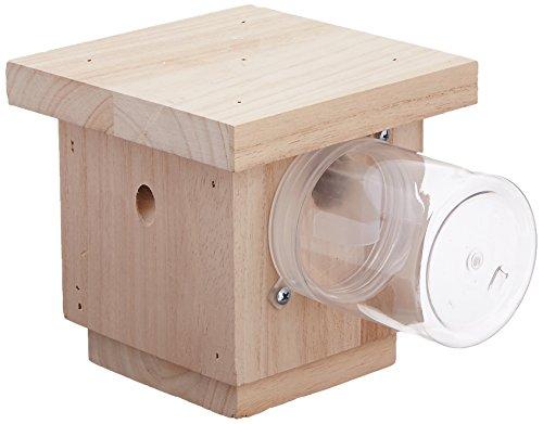 hanging-carpenter-bee-trap