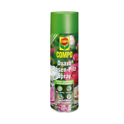 compo-duaxor-rosen-pilz-spray-vollsystemisches-fungizid-spray-gegen-echten-mehltau-rost-sternrusstau