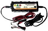 COMPRARE WEB Tragbares Web-Ladegerät, batteriebetrieben, für Auto und Motorrad, 6 V/1 A, 12 V/1 A
