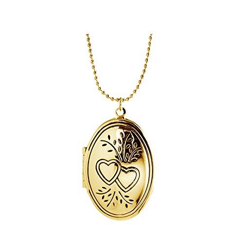 Daesar Edelstahl Kette Oval mit Herz Anhänger Halskette Kette Foto Medaillon zum Öffnen Photo Bilder Amulett für Damen Mädchen Gold Kette Länge 40cm