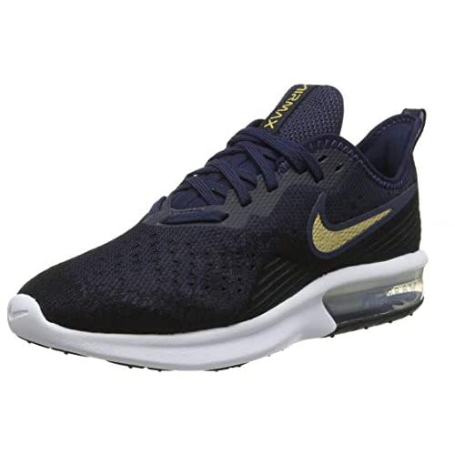 41qcrzOzJOL. SS500  - Nike Women's Air Max Sequent 4 Running Shoes