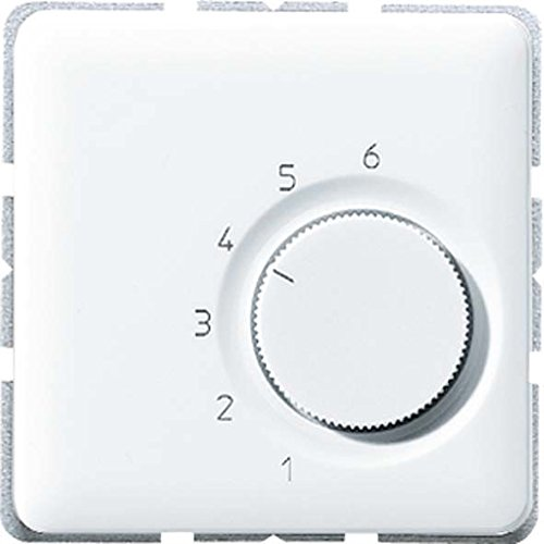Jung Temperaturregler Wechsler AC 24 V TRCD246GR