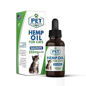 Pet Recovery Rx Natural 250mg Hemp Oil Drop for Cats - 1ml / 30oz Bottle - Organically Processed Tincture, Non-GMO Formula