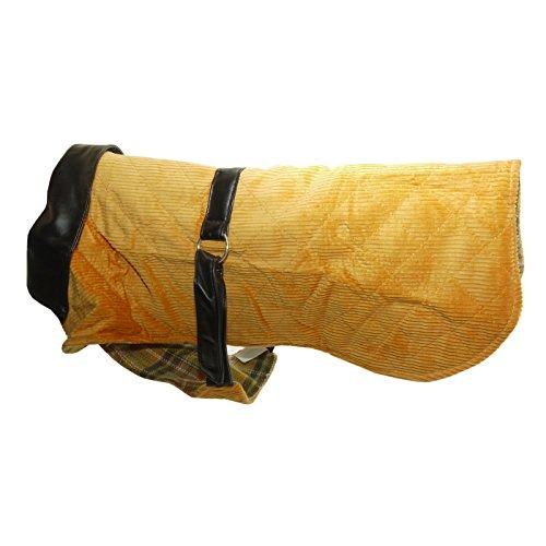 Vital Pet Products Kord und Leder Hunde-Mantel (50cm) (Orange)