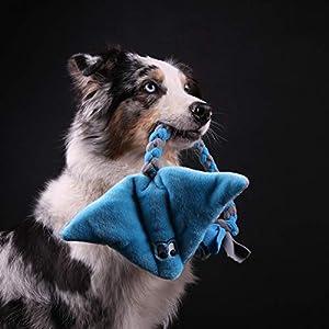 Rochen (Blau-Grau) Hunde spielzeug ist aus weichem und feinem Plüsch gefertigt. Der mittlere Teil des Stachelrochens (der Körper) ist mit Hohlfaser gefüllt. Für eine bessere Haltbarkeit besteht das Spielzeug aus zwei Schichten Stoff. Der Schwanz ist ...