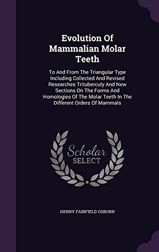 Evolution Of Mammalian Molar Teeth: To And From The Triangular Type Including Collected And Revised Researches Trituberculy And New Sections On The ... Teeth In The Different Orders Of Mammals