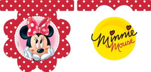 Disney Amscan Minnie Daisies Pennant Banner