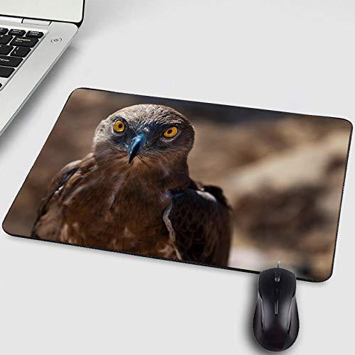 Neue Muster Falcon Animals Haustier Hund Katze Muster Druck Mini Pc Tablet Computer Gamer Mousepad für Verbessern Maus Speed-250X290X2MM -