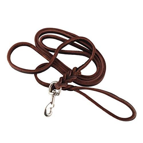 hundeinfo24.de OFTEN® 3m lange Leder geflochten Hund Pull braun Hundeleine
