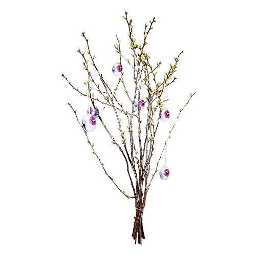 10 Sauerkirschzweige ca. 80cm: Strauß mit echten Zweigen | frische Kirschzweige geschnitten | Osterstrauß Kirsch