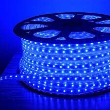 Bright Electronics Decorative 10 Meter LED Rope Light, Water Proof, Color: Blue with Adapter