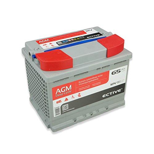 ECTIVE 65Ah 12V AGM Batterie EDC-Serie VRLA Versorgungsbatterie in 7 Varianten: 65Ah - 230 Ah (wartungsfrei) (Glas-mat-akkus)