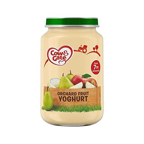 Cow & Gate 200G Stufe 2 Glas Obstgarten Fruchtjoghurt - Packung mit 6