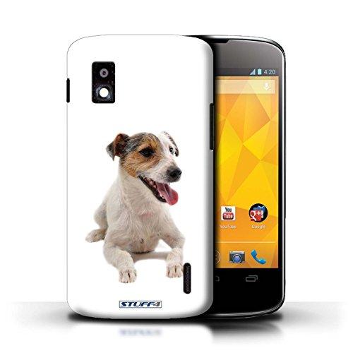 Kobalt® Imprimé Etui / Coque pour LG Nexus 4/E960 / Husky/Esquimau conception / Série Chiens Jack Russell Terrier