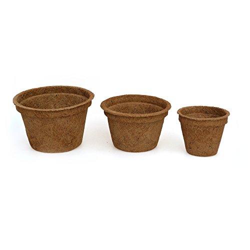CocoPot, pot, pots organiques, pot de fibre de coco, rempoter sans choc de plante(0.5 liter,50 pots)