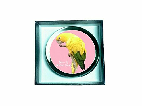 queen-of-bavaria-golden-conure-glass-paperweight-pg-0578