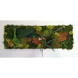 TABLEAU CADRE MUR VEGETAL STABILISE 90 x 30 cm