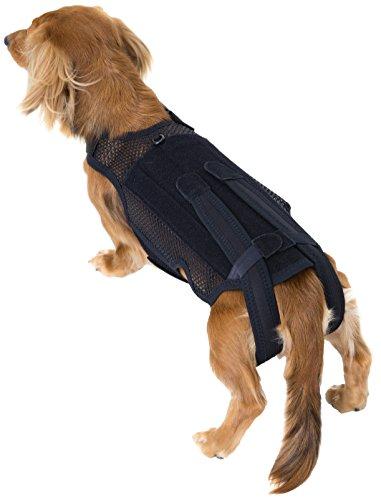 Medizinische Rückenstabilorthese für kleine Hunde bei Bandscheibenvorfall und Rückenleiden - Größe S, hard (schwarz) -