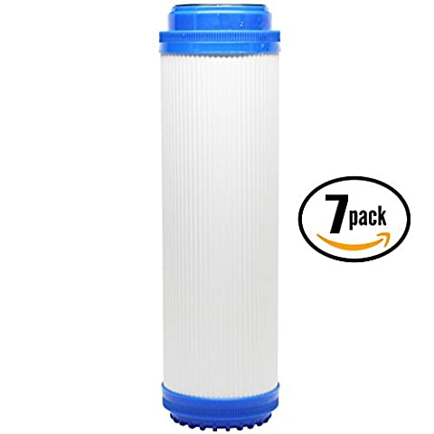 Replacement Everpure CGS-10 EV910010 Granular Activated Carbon Filter - Universal 10-inch Cartridge for EVERPURE CGS-10 SINGLE SERIES 10 HOUSING - Denali Pure Brand by Denali Pure