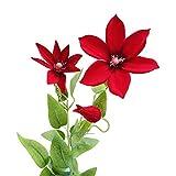 Godagoda Unechte Blume Künstliche Simulation Deko Seidenblume Gefälschte Pflanzen für Hochzeit Party Rot