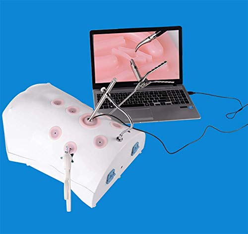 LSTNM Caja De Entrenamiento Laparoscópico Kit De Simulador De Entrenamiento Caja De Entrenamiento Protésico +4 Equipo De Entrenamiento +4 Módulo + Cámara HD De 30 Grados