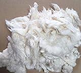 Bastellwatte aus 100% Baumwolle-kbA (kontrolliert biologischem Anbau)/ Fairtrade,GOTS, weiss, 500 gram,Füllwatte,Füllmaterial für:Puppen,Plüschtiere,Kissen,Bären etc.
