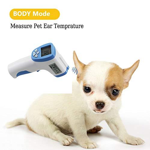 ZUZU El Mejor termómetro Digital para Mascotas (termómetro) - Adecuado para Mascotas - Termómetro para Perros y Gatos - Exacto y rápido - Termómetro Oral y Rectal