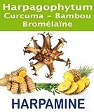 harpamine–Harpagophytum bromélaïne Kurkuma Bambus 90Kapseln–Hilft reduzieren die Staaten inflammatoires. Komfort der Gelenke, Sehnen und den Rücken