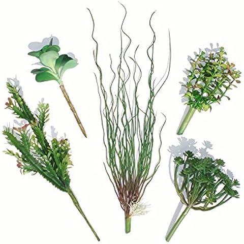 Conjunto de 5 Diferentes Plantas Suculentas y Césped - Plantas Artificiales
