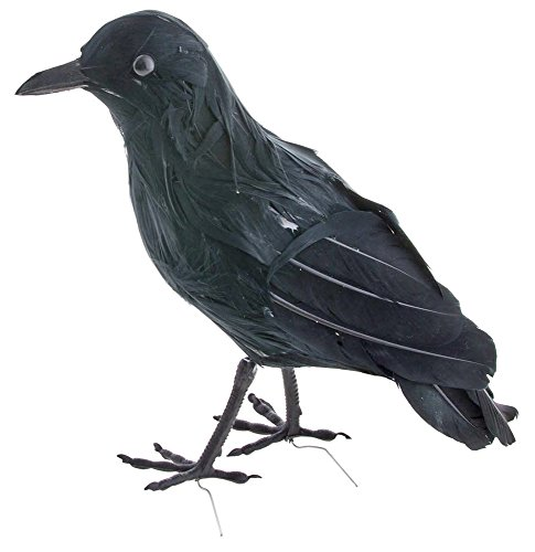 Schwarzer Rabe 23 cm - Tolles Zubehör zu Hexe Sensenmann Galgenmann Zombie Vogelscheuche - Krähe Rabe Kostüm