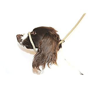 Dog-Field-Figure-8-Anti-Pull-Rope-LeadHalter-Head-CollarHarness