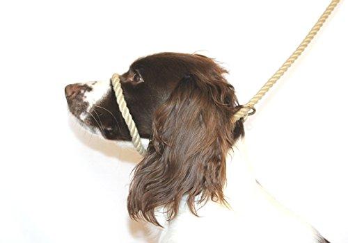 Dog & Field Figure 8 Anti-Pull Lead/Halter/Head Collar/Harness (Natural) 1
