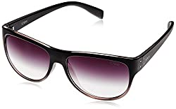 IDEE Wayfarer Sunglasses (IDS1864C1SG|100|Black and Tan )