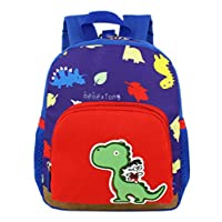 HIMISSU Baby Boys Backpack Girls School Bags Kids Bag Dinosaur Pattern Cartoon Backpack Toddler School Bags Plus Size Top-Handle Bags Cross-Body Bags Handbags Children Backpacks Daypacks