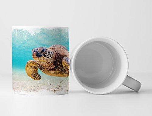 Eau Zone Fotokunst Tasse Geschenk Tierfotografie – Grüne Meeresschildkröte Hawaii