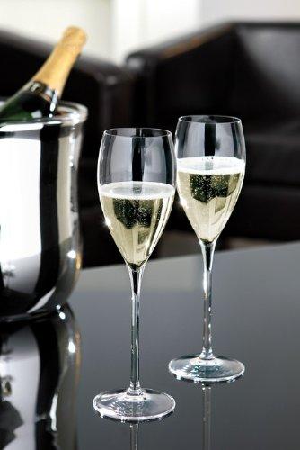Fink Champagnerglas SALVADOR - 6 stoßfeste Gläser in vollendeter Schönheit