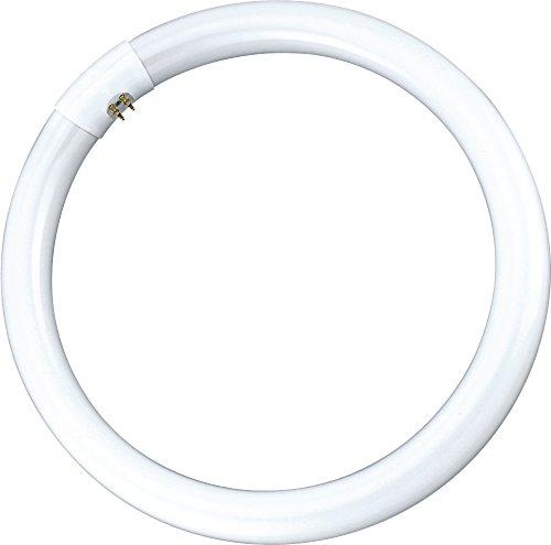 Garza Lighting - Tubo de fluorescencia circular T9 trifósforo, 32 W