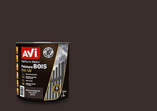 AVI - PERFORM ACTIV BOIS - Peinture Anti-pluie pour Boiseries Extérieures -...