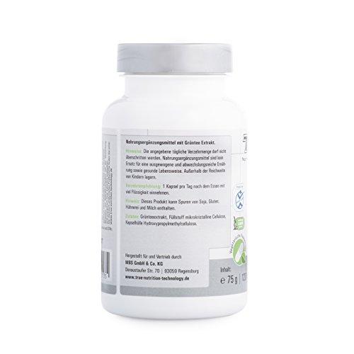 Green Tea Kapseln – Grüntee-Extrakt – Grüner Tee für mehr Fokus & Energy – Vegetarisch / 120 Kapseln