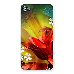 Impressive Beauty Flowers Print Back Case Cover for Micromax Canvas Fire 4 A107