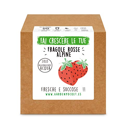 Garden Pocket - Fai crescere le tue FRAGOLE ROSSE - Kit di germinazione
