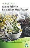 Meine liebsten heimischen Heilpflanzen -