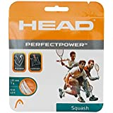 Head Perfect Power Squash String 17L (White)