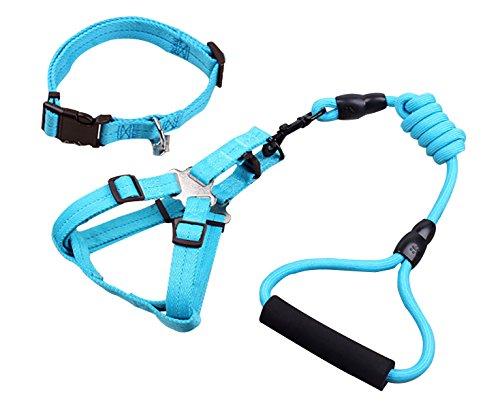 verstellbar Hundegeschirr mit Leine 4 Meter lang in hellblau Hundehalsbänder für kleines Licht Haustiere (3 Stück)