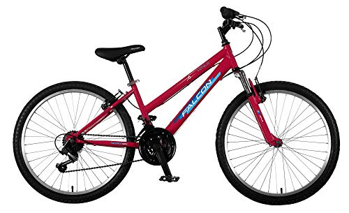 Falcon Girls' F3241004 Venus G24, Pink/Blue, 24'' Best Price and Cheapest