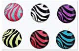 6pcs Colorful Zebra Patterns Home Button Sticker for Apple iPhone iPod Touch 5 4 3 2&1 iPad 1 2 3 Mini