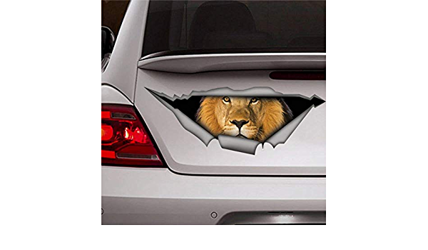 Donl9bauer Autoaufkleber Löwe Tier Vinyl Auto Scratch Cover 3d Aufkleber Fenster Aufkleber Für Laptop Reise Fall Tumbler Tür Stoßstange Gepäck Auto