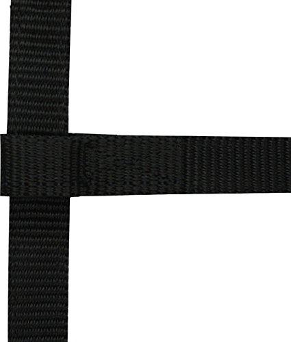 Mini Fohlen Halfter Ekkia schwarz